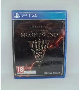 The Elder Scrolls Online : Morrowind sur PS4 (Playstation 4)