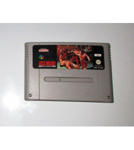 Pit Fighter sur Super Nintendo