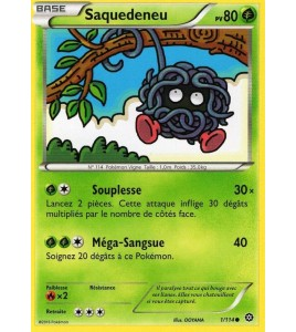 Carte Pokémon Saquedeneu 80pv 1 114 XY Offensive Vapeur